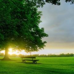 جملات کوتاه و آموزنده انگلیسی به فارسی(19)