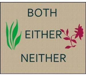 نکات کاربردی استفاده ازneither و either