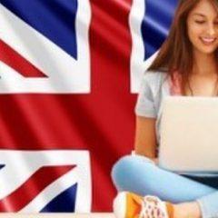 سبک های یادگیری یک زبان خارجی