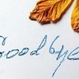 اصطلاحات خداحافظی در انگلیسی