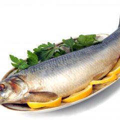 لغتنامه ی مربوط به اغذیه و غذاهای دریایی به انگلیسی